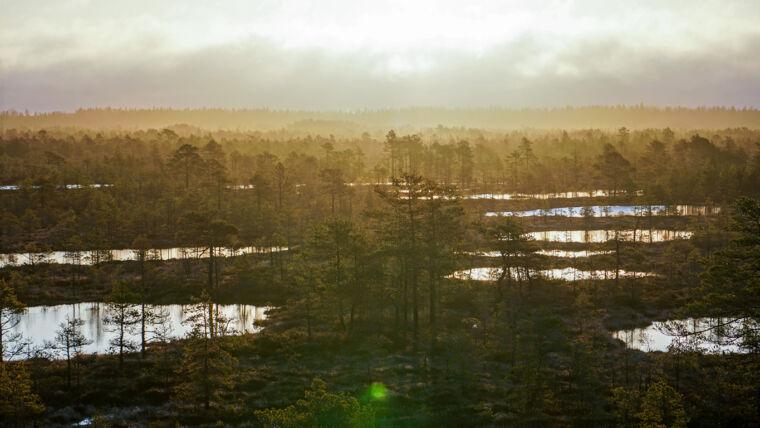 päikesetõusumatk 360 kraadi